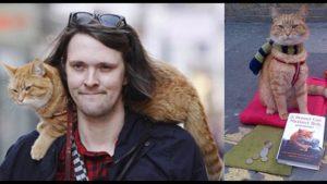 "Film ""A streetcat named Bob"" @ Agnus Dei-Kerk | Waalre | Noord-Brabant | Nederland"