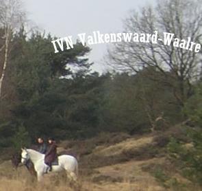 Sterrencursus IVN @ Hut van Mie Pils | Waalre | Noord-Brabant | Nederland
