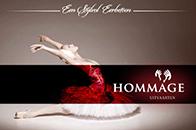 LEZING Hommage - een stijlvol eerbetoon @ Tuinzaal Eeckenrhode Waalre | Waalre | Noord-Brabant | Nederland