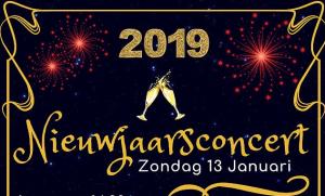 Nieuwjaarsconcert 2019 @ Het Huis van Waalre | Waalre | Noord-Brabant | Nederland