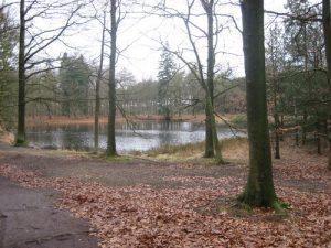 WSV Voorjaarswandeling @ Gemeenschapscentrum Den Eijkholt | Luyksgestel | Noord-Brabant | Nederland