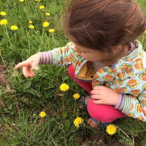 Wildplukken en proeven @ Het Huis van Waalre | Waalre | Noord-Brabant | Nederland