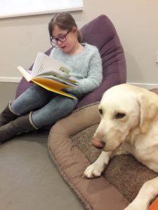 Kwispellezen aan de hond @ Het Huis van Waalre | Waalre | Noord-Brabant | Nederland